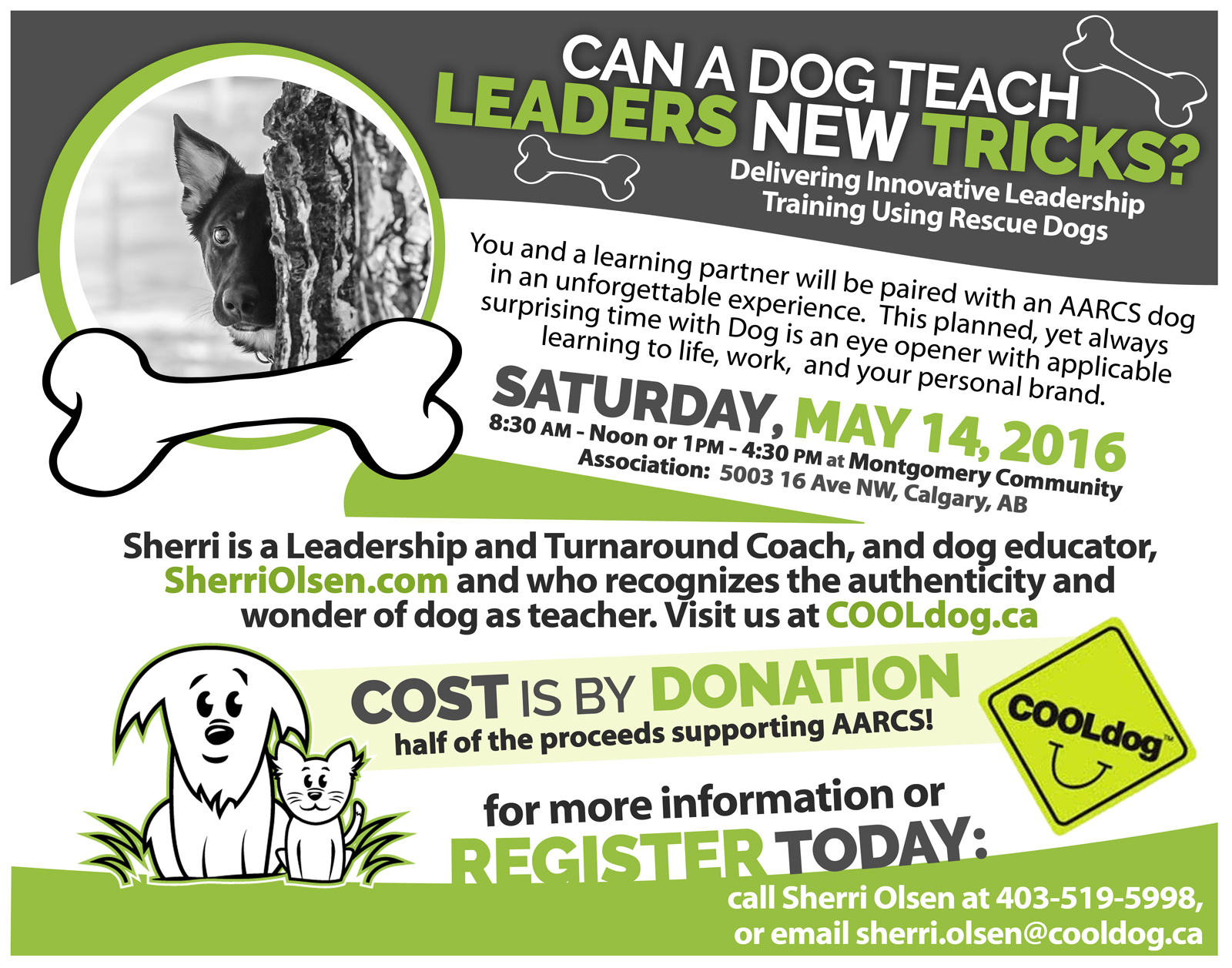 Can a dog teach leaders new tricks?